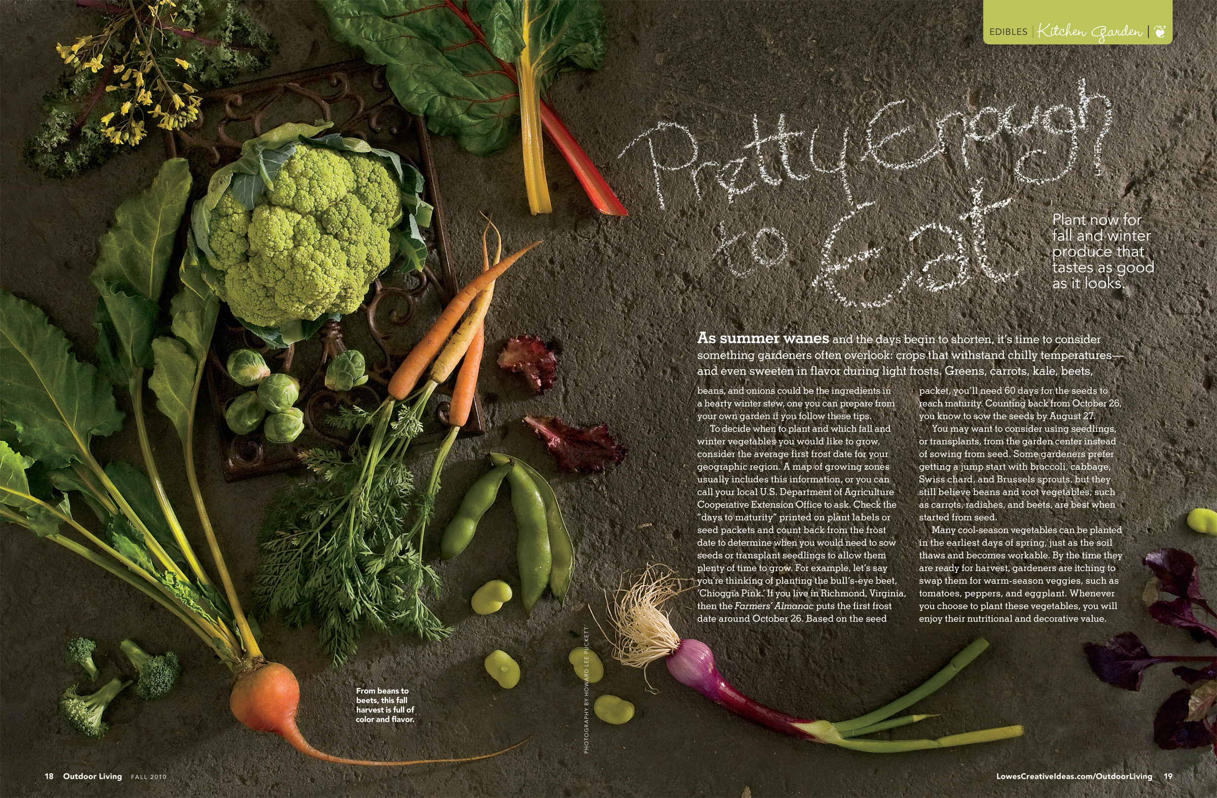 Lowe's Outdoor Living Magazine: Fall 2010 – Vegetables
