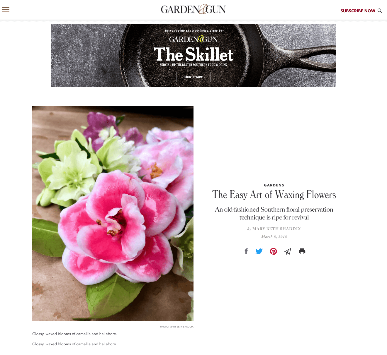 GardenandGun_Easy Art of Waxing Flowers March 2018 Shaddix