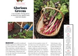 Southern Living Feb18 Homegrown Gardening